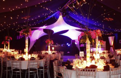 Starlight Ceiling Decor rental